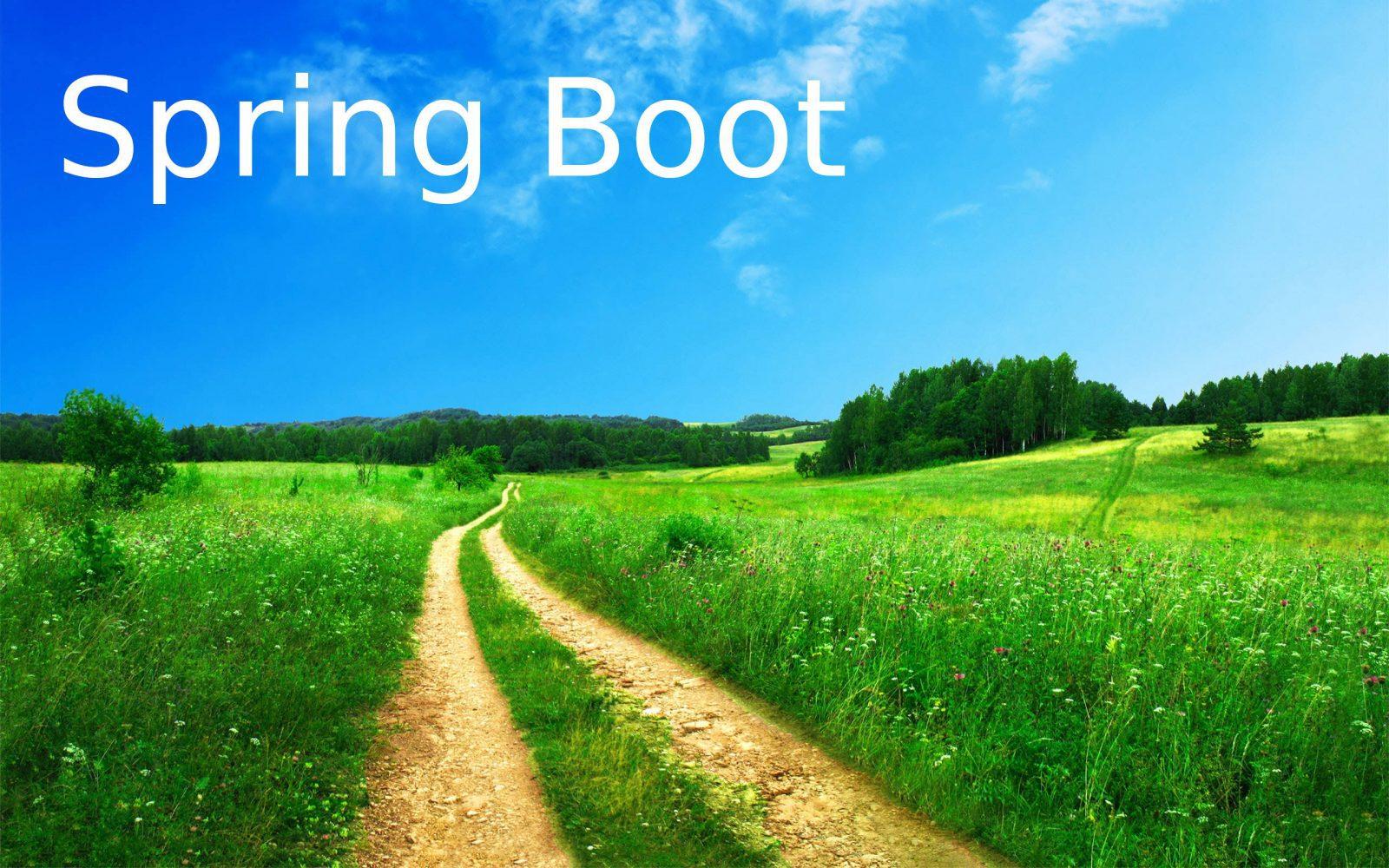 Spring Boot application in Docker using Spotify Dockerfile Maven