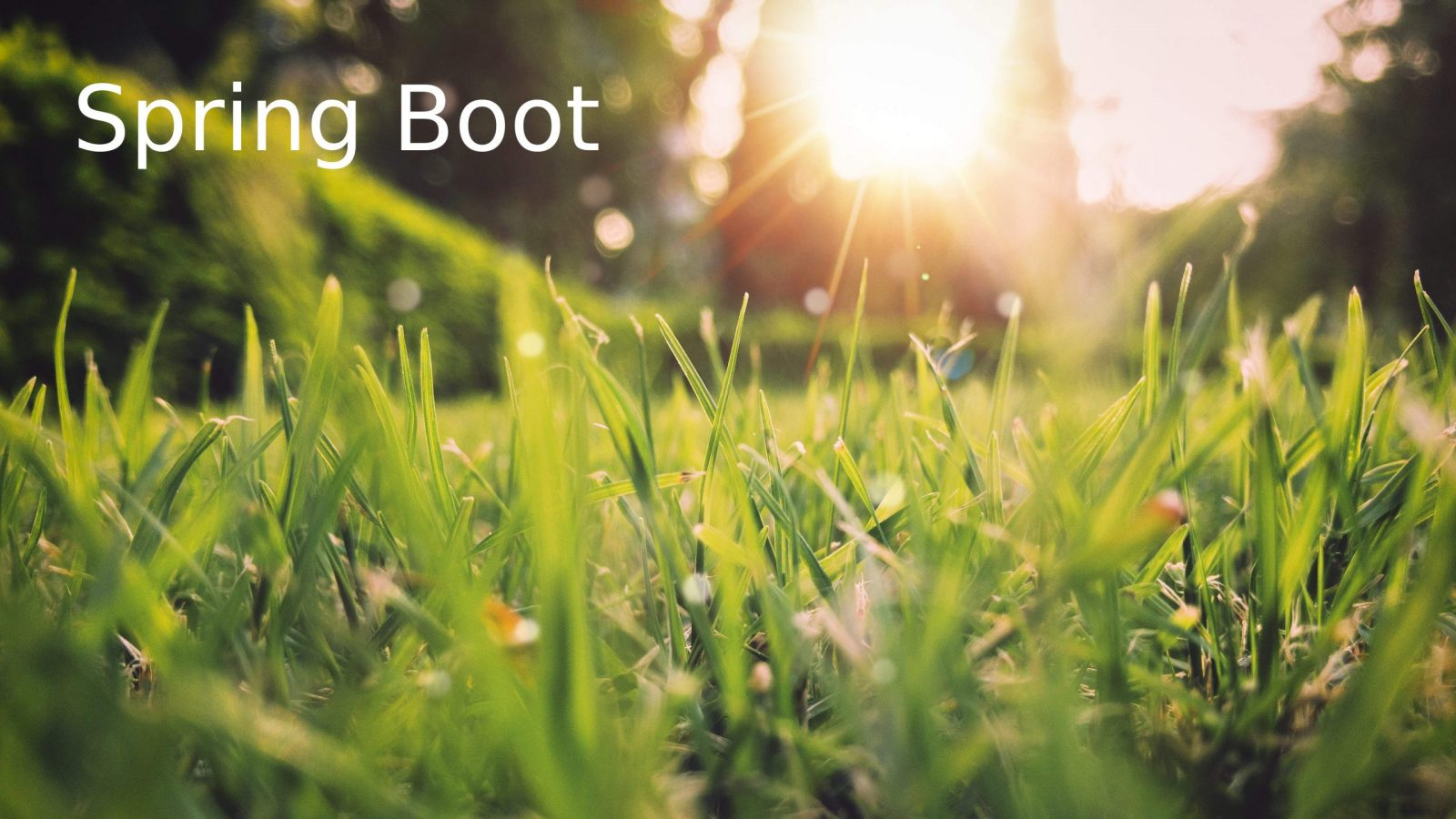 Spring Initializer and simple Web Spring Boot application